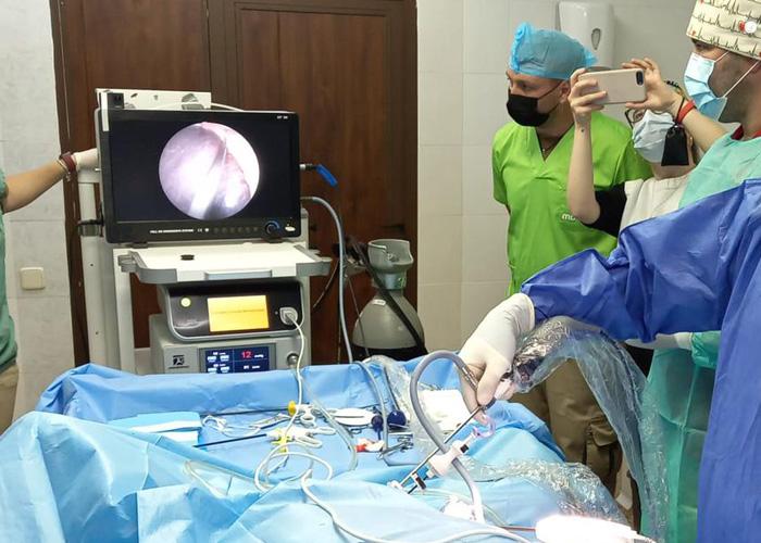 Application Of Veterinary Laparoscope In Animal Reproduction