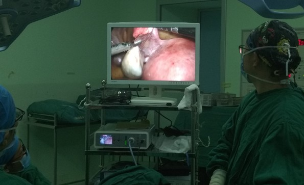 Principles and indications of laparoscopic surgery