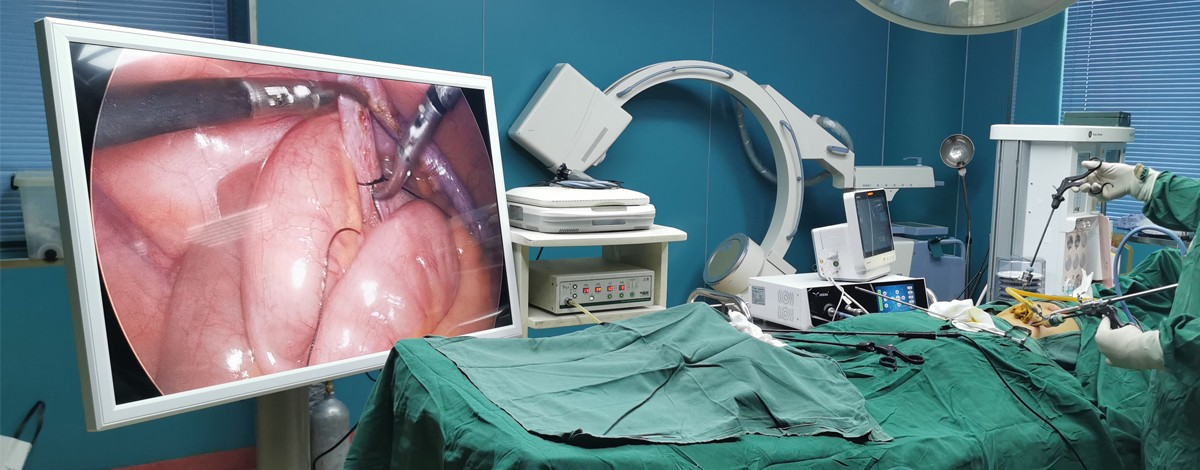 Gynecology Dept.